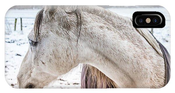 A Girlfriend Of The Horse Amigo IPhone Case
