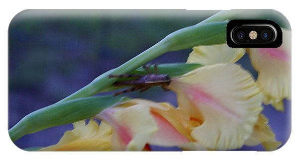 A Glad Hopper 3 Phone Case by Debbie May