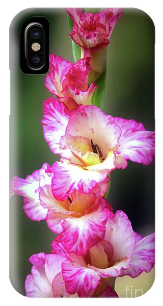 A Gladiolus IPhone Case