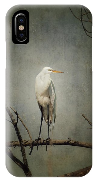 A Great Egret IPhone Case