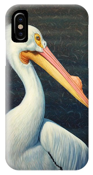 Pelican iPhone Case - A Great White American Pelican by James W Johnson