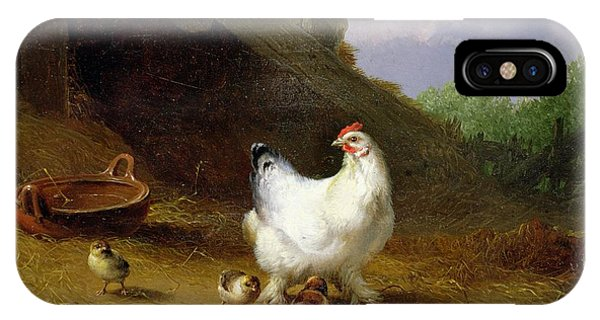 A Hen With Her Chicks IPhone Case