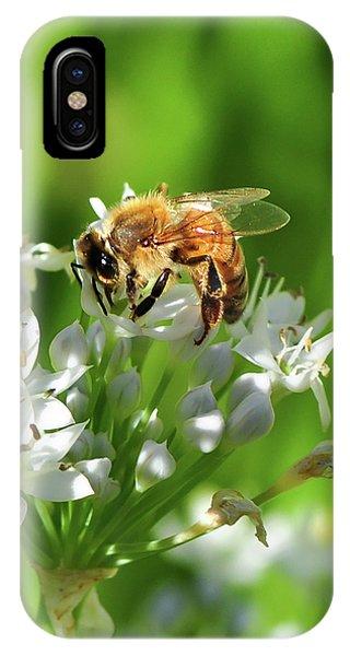 A Honey Bee At Work In An Herb Garden IPhone Case