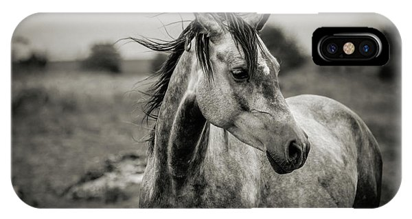 A Horse In Profile In Black And White IPhone Case