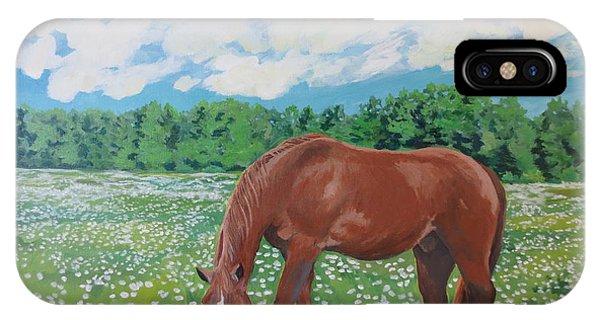 A Horse Named Dante IPhone Case