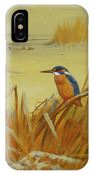 A Kingfisher Amongst Reeds In Winter IPhone Case