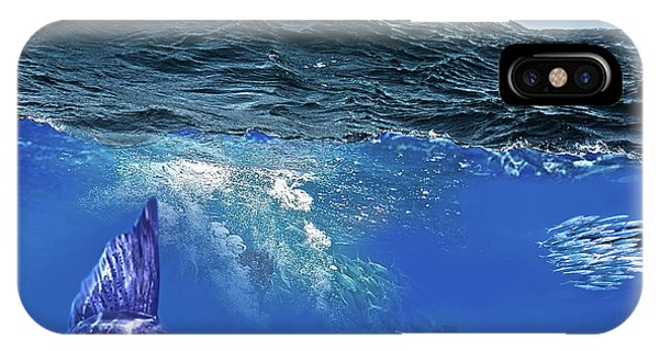 A Large Sailfish, Herding Schools Of Fish IPhone Case