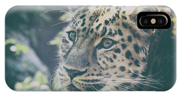Snow Leopard iPhone Case - A Leopards Look by Martin Newman