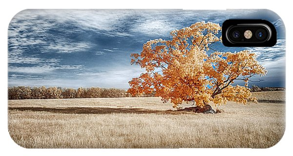 A Lone Tree IPhone Case