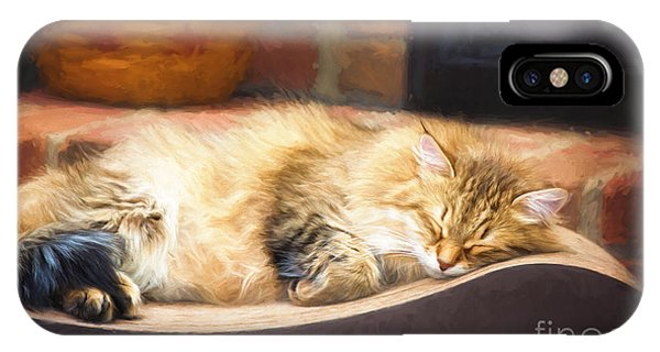 A Long Winter's Nap IPhone Case