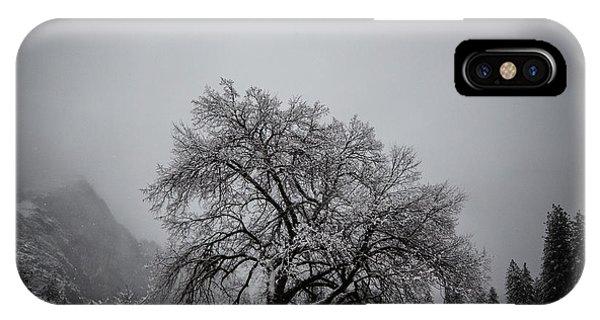 A Magic Tree IPhone Case