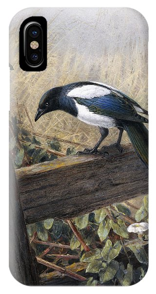 Magpies iPhone Case - A Magpie Observing Field Mice by Johan Gerard Keulemans