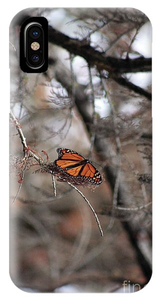A Monarch For Granny IPhone Case