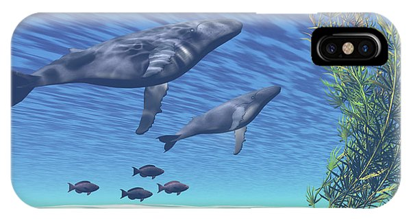 A Mother And Calf Humpback Whale Rise IPhone Case