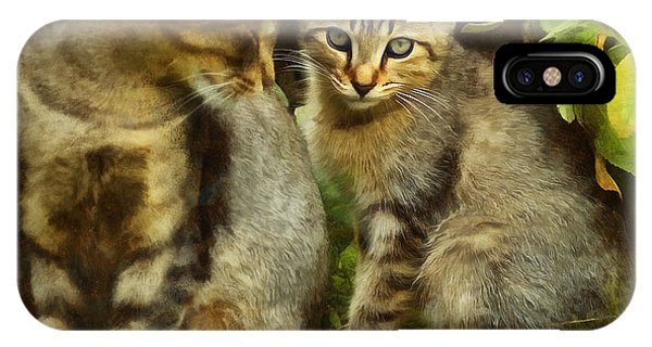A Pair Of Feral Cats IPhone Case
