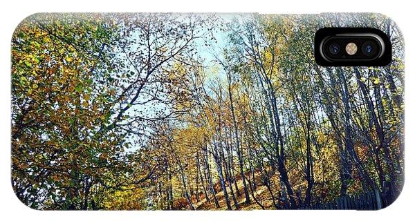 A Path In The Autumn IPhone Case