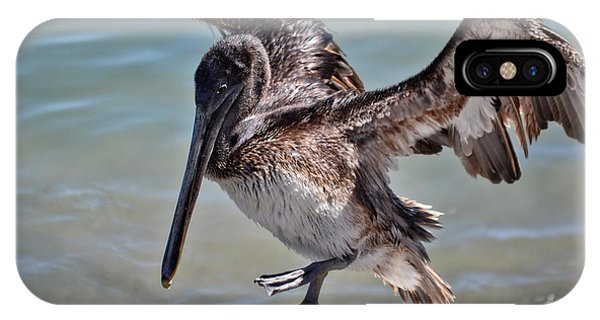 A Pelican Practising A Karate Kick Like Daniel In The Karate Kid IPhone Case