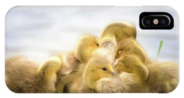 A Pile Of Goslings IPhone Case