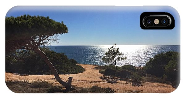 IPhone Case featuring the photograph A Pine Tree In Front Ot The Atlantic Ocean by Dirk Jung