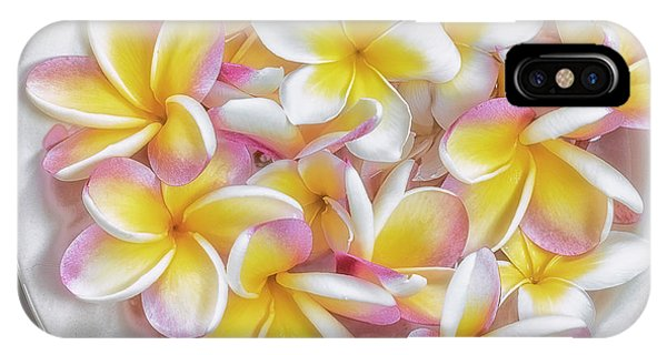 A Plate Of Plumerias IPhone Case