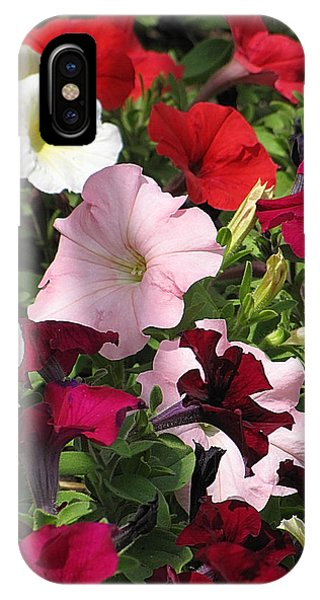 A Plethora Of Petunias IPhone Case