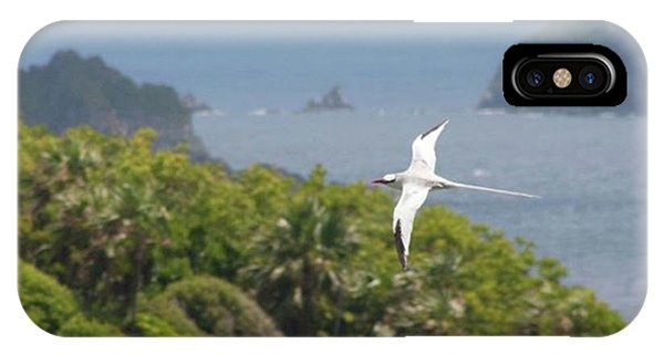 Scenic iPhone Case - A Red-billed Tropicbird (phaethon by John Edwards