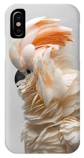 A Salmon-crested Cockatoo IPhone Case