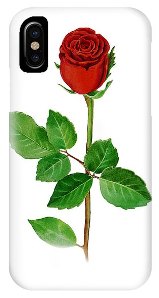 Hyper Realism iPhone Case - A Single Rose by Irina Sztukowski