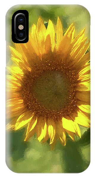 A Single Sunflower Showing It's Beautiful Yellow Color IPhone Case