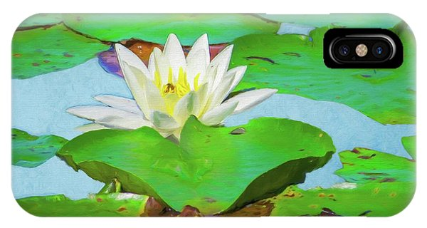 A Single Water Lily Blossom IPhone Case