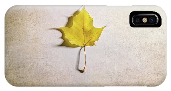 Change iPhone Case - A Single Yellow Maple Leaf by Scott Norris