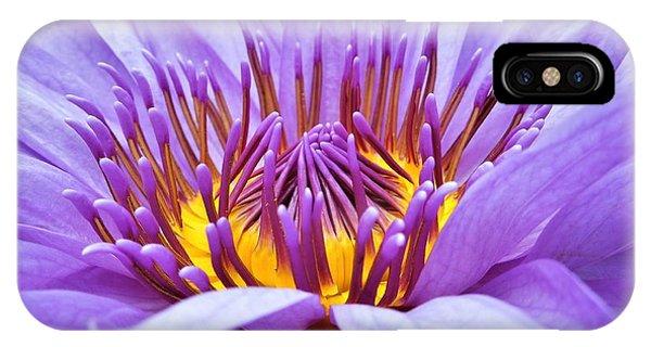 A Sliken Purple Water Lily IPhone Case