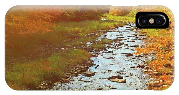 A Small Stream Bright Fall Color. IPhone Case