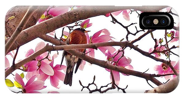 Florals iPhone Case - A Songbird In The Magnolia Tree by Rona Black