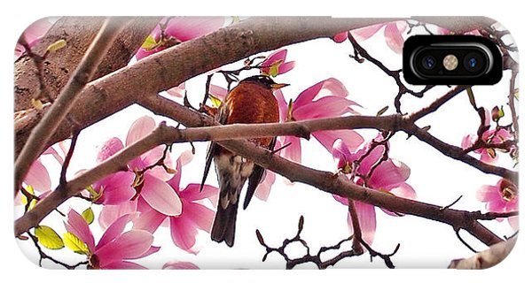 A Songbird In The Magnolia Tree - Square IPhone Case