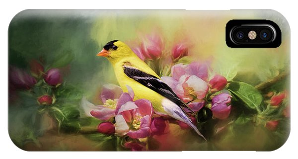 A Splash Of Joy Bird Art IPhone Case