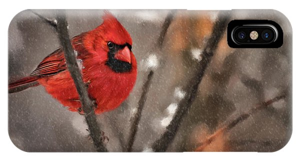 Avian iPhone Case - A Spot Of Color by Lois Bryan