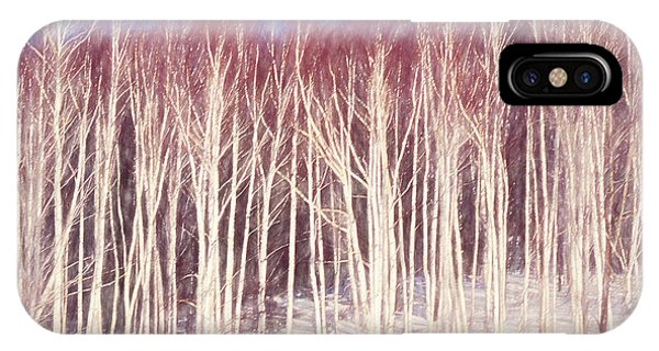 A Stand Of White Birch Trees In Winter. IPhone Case