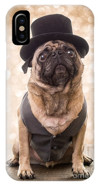 Pug iPhone X Case - A Star Is Born - Dog Groom by Edward Fielding