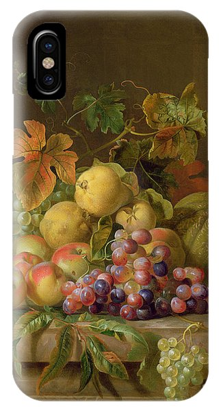 Life iPhone Case - A Still Life Of Melons Grapes And Peaches On A Ledge by Jakob Bogdani