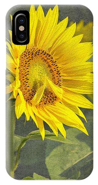 A Sunflower's Prayer IPhone Case