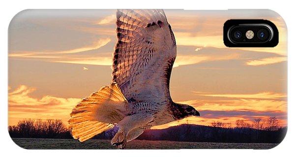 A Sunset Flight IPhone Case