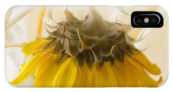 A Suspended Sunflower IPhone Case