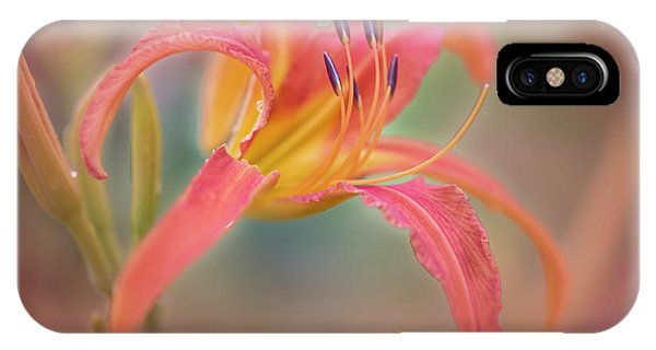 A Thing Of Beauty Lasts Only For A Day. IPhone Case