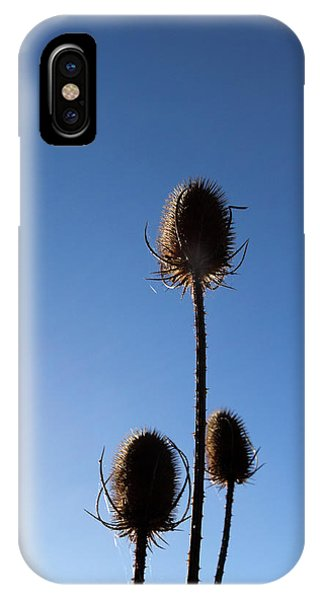 A Thriving Trio 2 IPhone Case