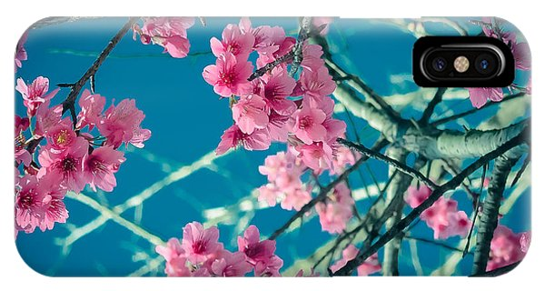 A Time To Blossom IPhone Case