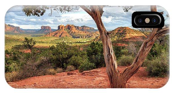 A Tree In Sedona IPhone Case