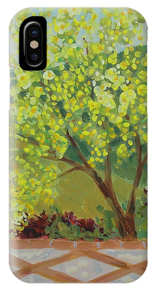 A View From Hearst Castle IPhone Case