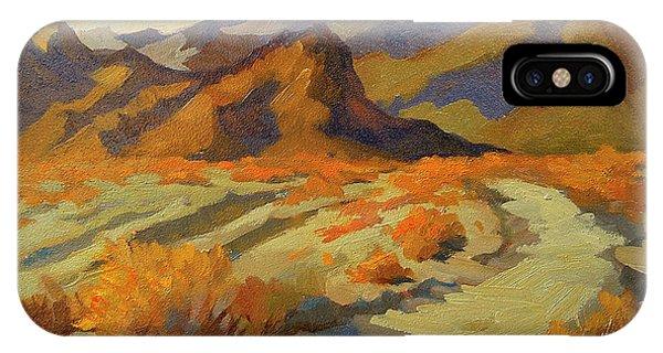 Bear Creek iPhone Case - A Walk In La Quinta Cove by Diane McClary