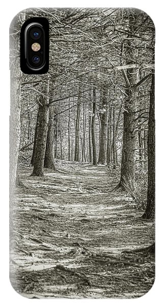 A Walk In Walden Woods IPhone Case
